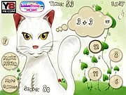 Cat Math Game Online
